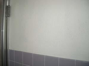 浴室クリーニングで黒カビを除去した壁です
